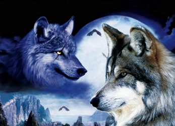 3D Picture 52--Two Wolves with Moon