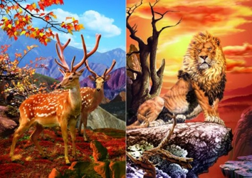3D Picture 59--Lion on Rock/Axis Deer