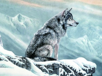 3D Picture 67--Lone Sitting Wolf in Snow