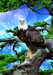 3D Picture 70--Eagle inTree
