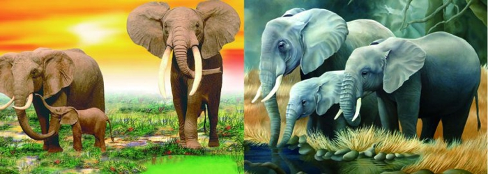 3D Picture 76--Three Elephants