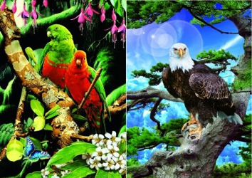 3D Picture 82--Eagle in Tree/Exotic Birds