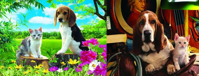 3D Picture 87--Basset Hound with Cat/Beagle with Cat