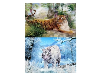 3D Picture 73--Siberian Tiger/Bengal Tiger