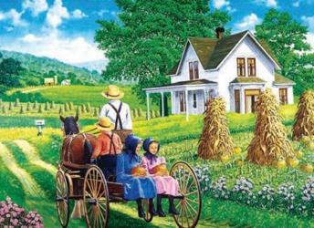 3D Picture 95--Amish Family