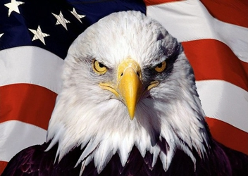 3D Picture 97--Eagle with Flag