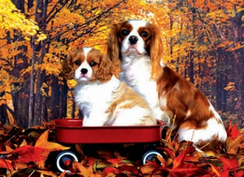 3D Picture 99--Spaniel Dogs in Wagon