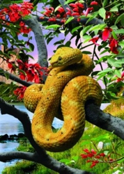 3D Picture 25--Snake in Tree