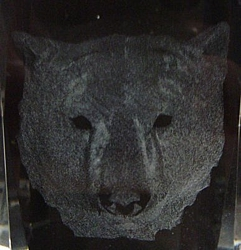 3D Laser Etched Crystal-Bear Head