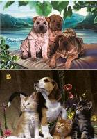 3D Picture 9615--Puppies & Kitties