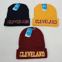 Knitted Toboggan [Embroidered CLEVELAND]*Wine/Gold