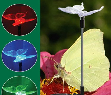 Solar Light-Butterfly