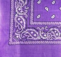 Bandana-Purple Paisley