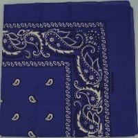 Bandana-Dark Royal Blue Paisley