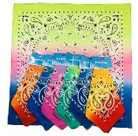 Bandanas-Color Fade Paisley with Hang Tag