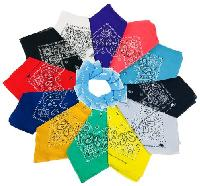 Bandanas-Assorted  Paisley with Hang Tag