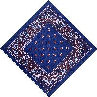 Bandana-Navy with Red Paisley