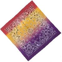 Bandana-Paisley Fade [Purple/Yellow/Red]