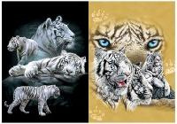3D Picture 9706--White Tigers