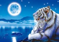 3D Picture 9707--White Tiger and Baby with Moon