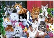 3D Picture 9710--7 Cats