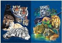 3D Picture 9711--Wild Cats