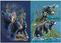 3D Picture 9718--Three Bears