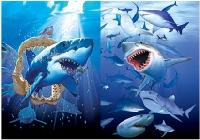 3D Picture 9727--Sharks