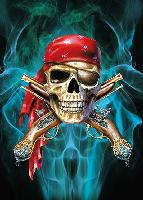 3D Picture 9730--Pirate Skull