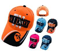 "TENNESSEE Hat ""TN"" [TN/Wave on Bill]"