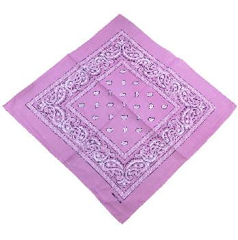 Bandana- Medium Pink Paisley